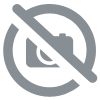 Godwin rental pump CD 225M